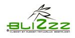 Blizzz.nl